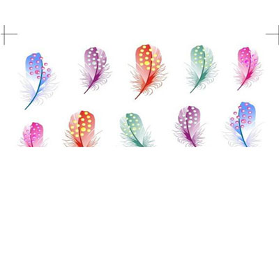 Plume stickers Coloré Nail Art Transfert Water Décal